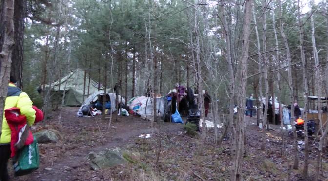 Romaaneja asuu metsässä talvellakin Tukholman lähellä