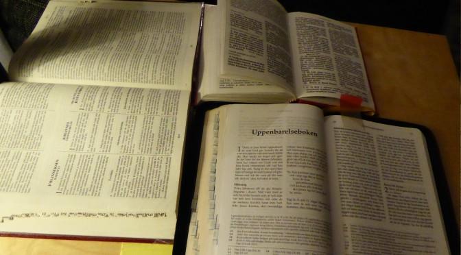 Svenska Folkbiblen 2014 NT lukeminen sanatarkasti sanakirjan avulla